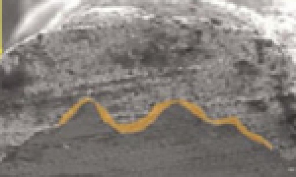 Elektroda przednia ogniw fotowoltaicznych