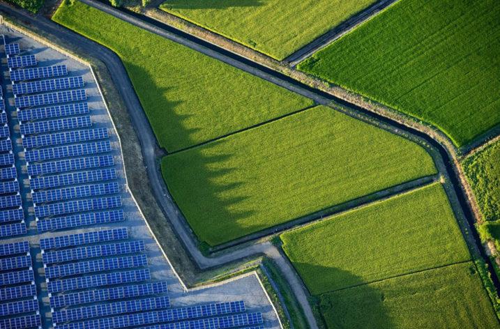Japońska rewolucja w dziedzinie energii odnawialnej
