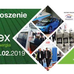 Spotkanie z zespołem Fronius na targach ENEX 2019